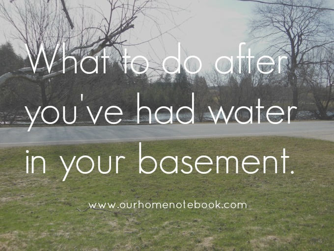 what to do after you've had water in your basement