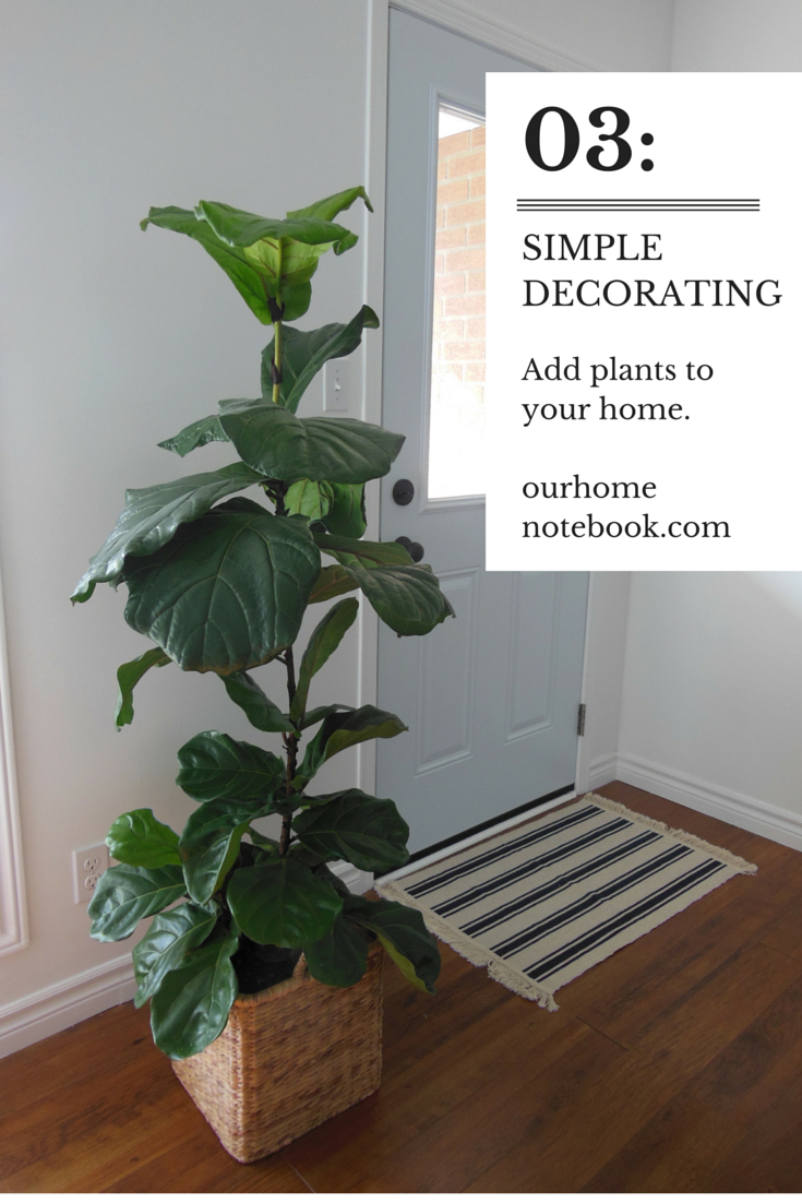 simple decorating: houseplants